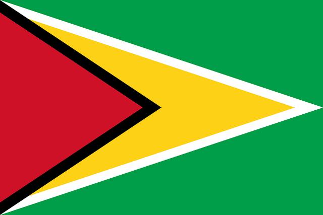 Bandera de Guayana