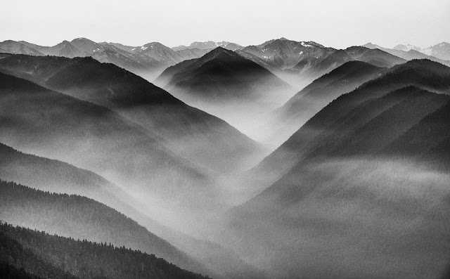 Hurricane Ridge, ONP, Washington State