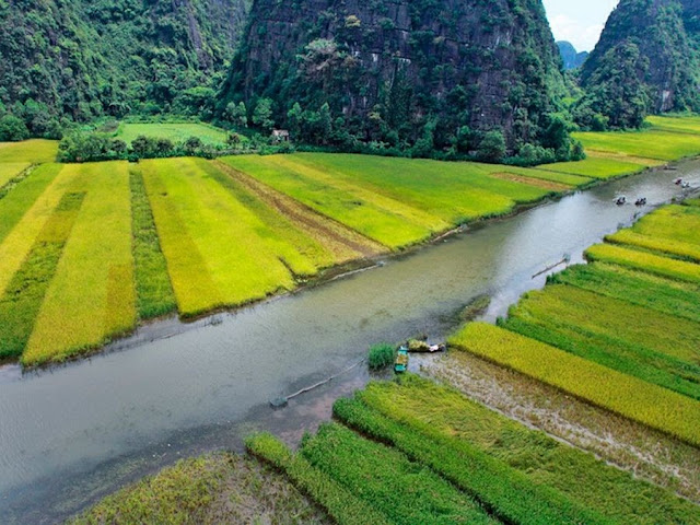 Mountains and Paddy Fields of Tom Coc
