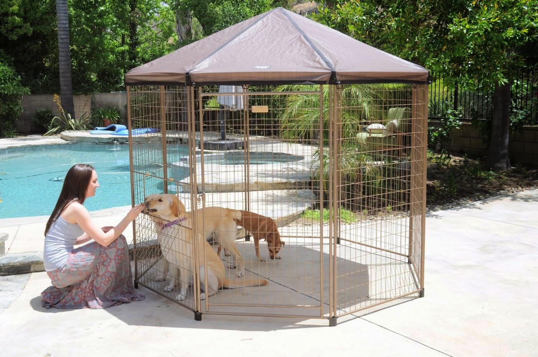 The Modern Bark | Dog Training Tips: 4 Best Portable ...