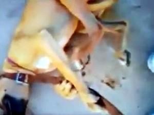 Amarrada com cinta, cadela foi agredida com chutes em Pirassununga (Foto: Reprodução/Facebook)