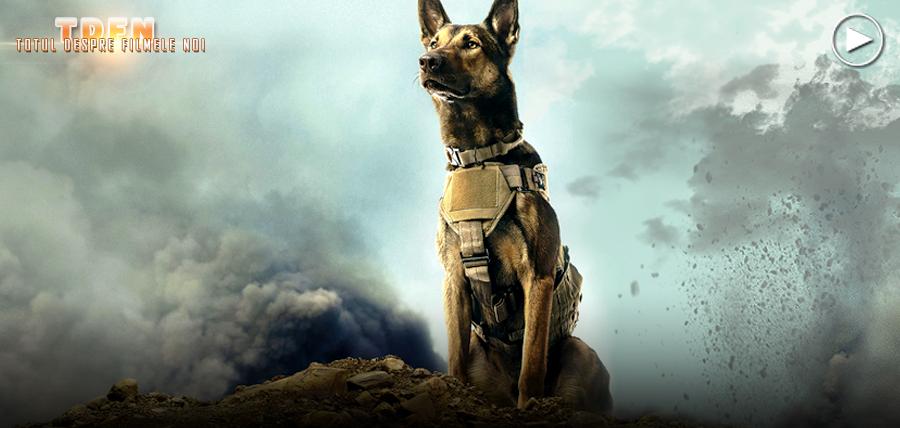 Povestea emoţionantă a unui câine militar în primul trailer pentru filmul Max