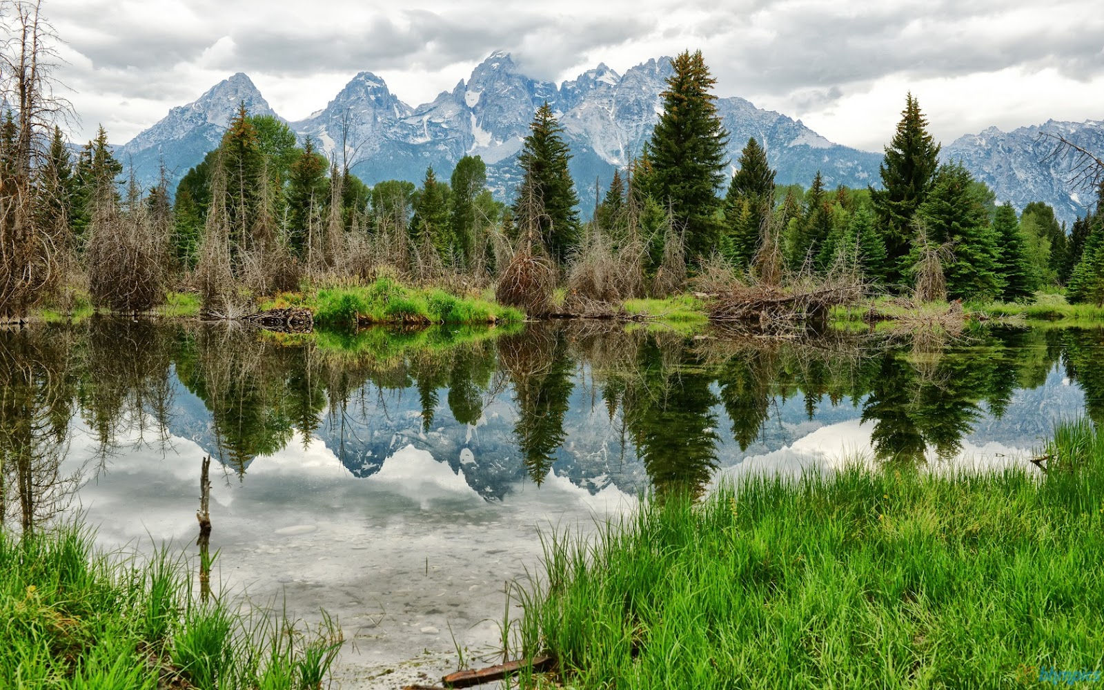 Free Best Pictures Mountains Forest Lake Wallpapers