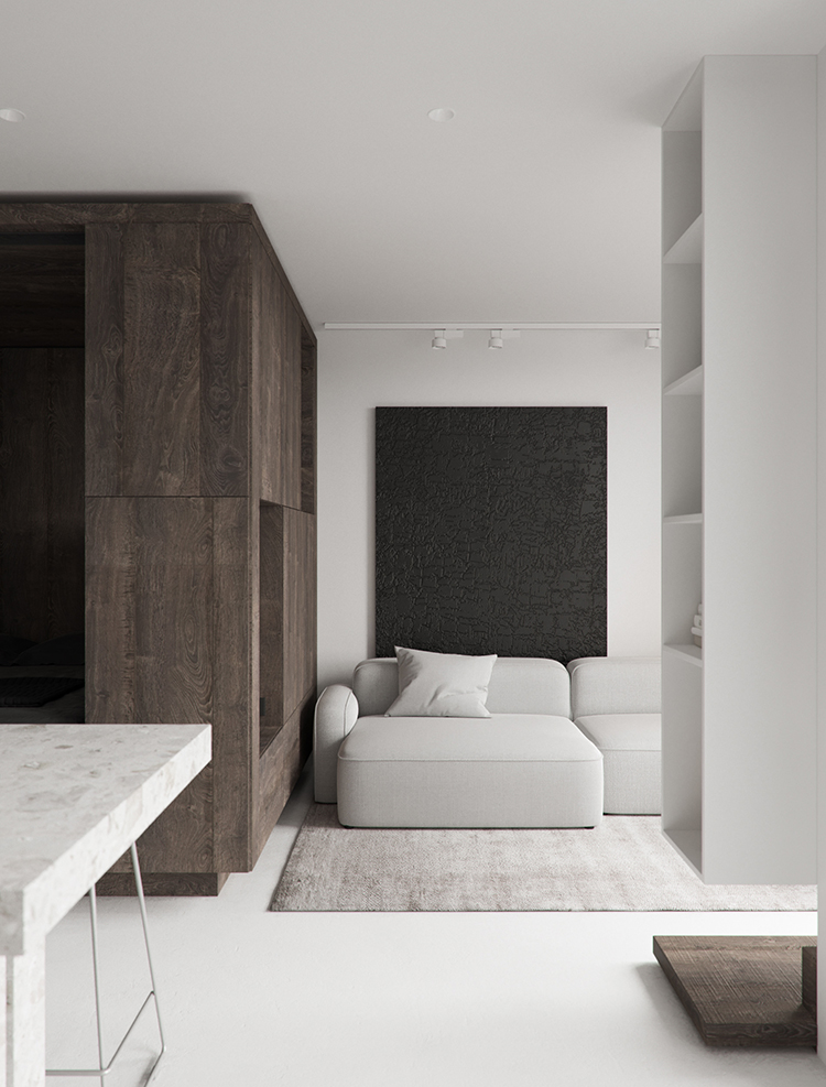Contemporary minimalistic small apartment with smart design by Artem Tiutiunnyk,