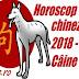 Horoscop chinezesc 2018 - Câine