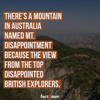 mountain,mt. disappointment,austraila