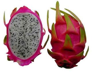 Daftar buah buahan yang berserat tinggi - Buah Naga