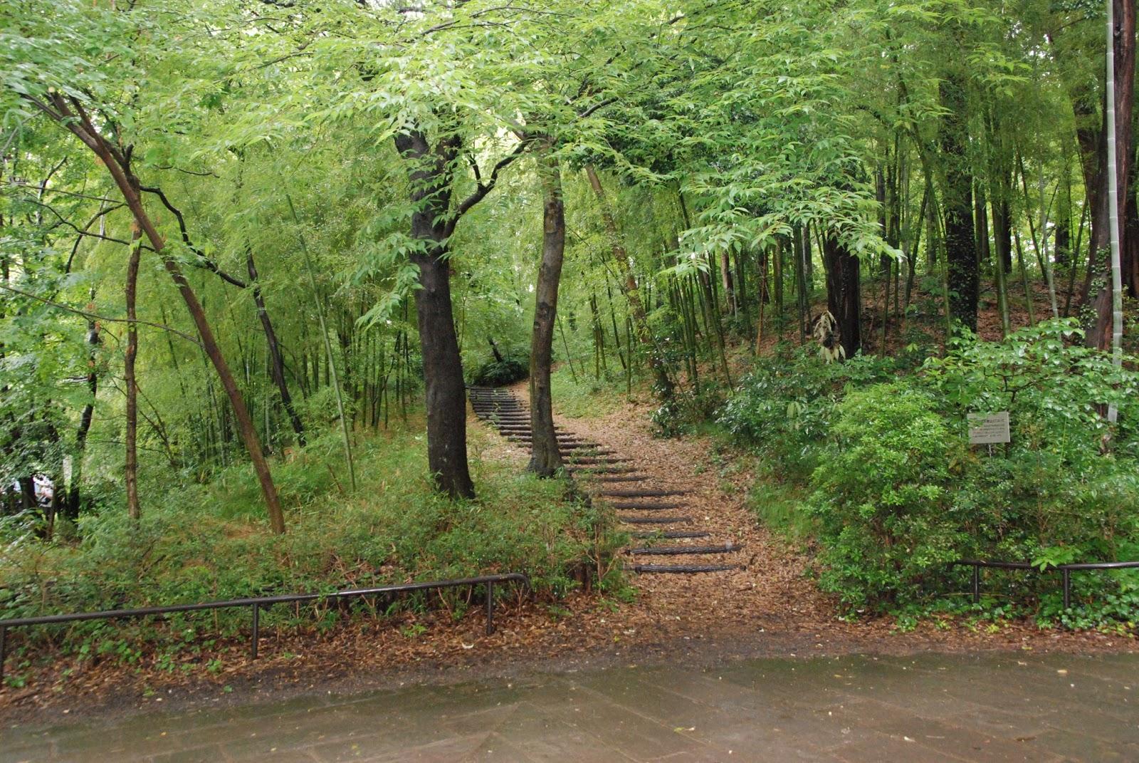 Leben in japan juni june regenzeit rainy season in japan for Traditionelles japan