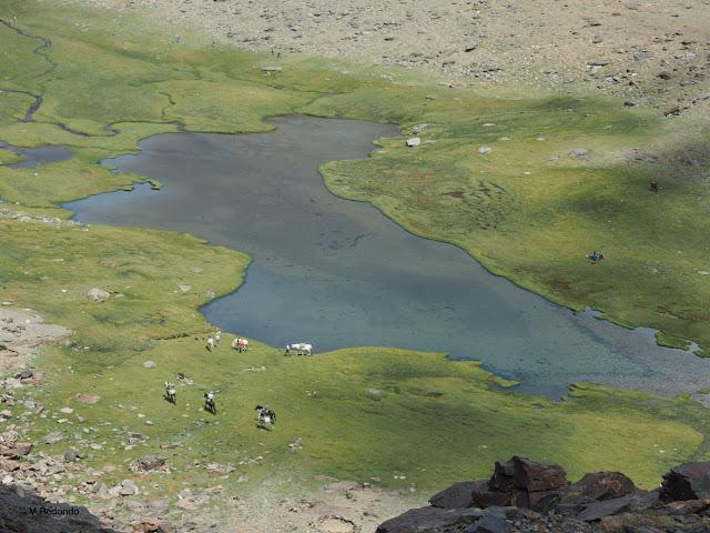 seven lagoons