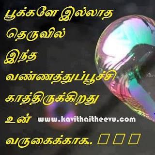 tamil new kathalar thina kavithai, tamil latest lovers day poem, tamil new kathalar thina vaalthu kavithai images download, kavithai theevu kadhal kavithaigal, 2016 latest lovers day wishes poems in Tamil font, kathalar thina sirappu kavithai.