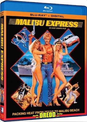 Malibu Express 1985 Dual Audio BRRip 480p 300Mb x264