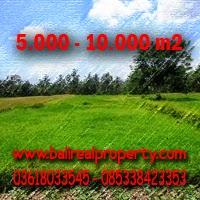 Dijual Tanah di Ubud Bali