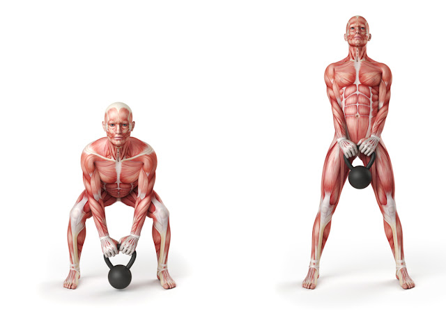 trainings for specific muscles