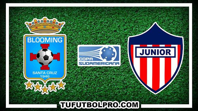 Ver Blooming vs Atletico Junior EN VIVO Por Internet
