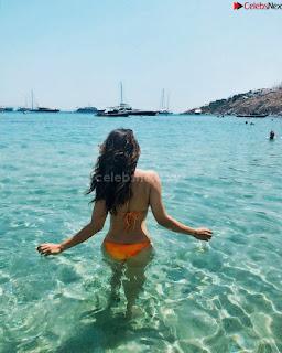 Shama Sikandar Beautiful Stunning Deep neck Gowns Bikini Inners 018.jpg