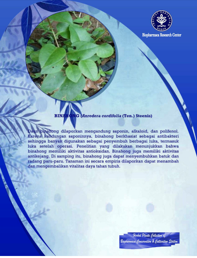 http://biofarmaka.ipb.ac.id/brc-upt/brc-ukbb/bccs-collection/593-herbal-plants-collection-binahong