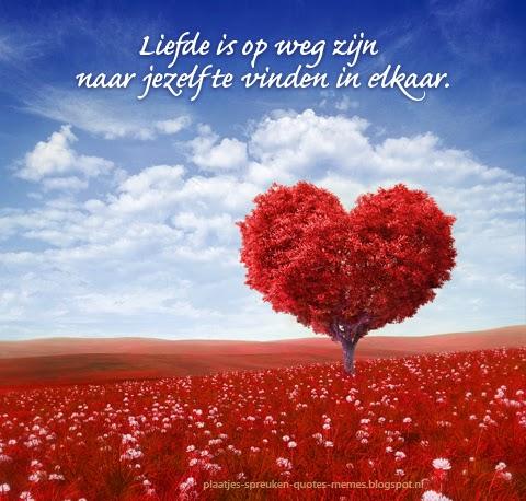 liefde citaten