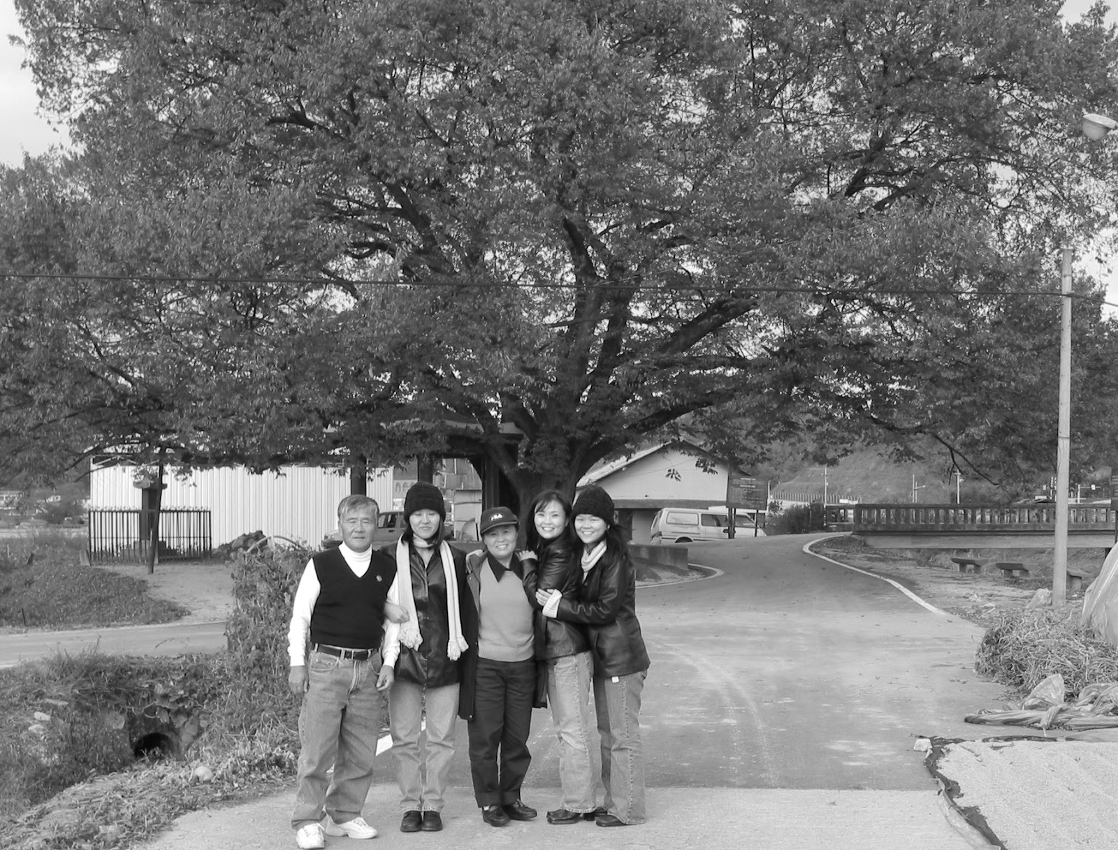 Left to Right: dad, sis, mom, me and sis The tree behind us was planted by my grandfather. After he died, my mother and her baby sister were sent off to live with their uncle's family. The creek on the left was where my mother hid, waiting for the hay truck to make her getaway to #Seoul in search for her mother.