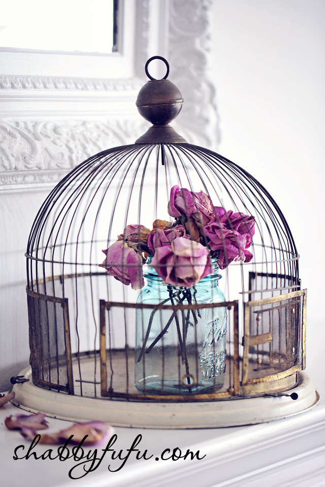 vintage birdcage displays
