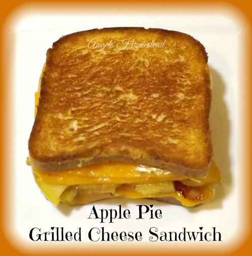 Home Sweet Homestead: Grilled Apple Pie Cheese