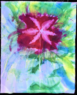 Solarfast prints_Sue Reno_Image 66