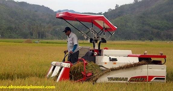 Peluang Usaha Pertanian Modern Yang Menjanjikan Perencanaan Ekonomi