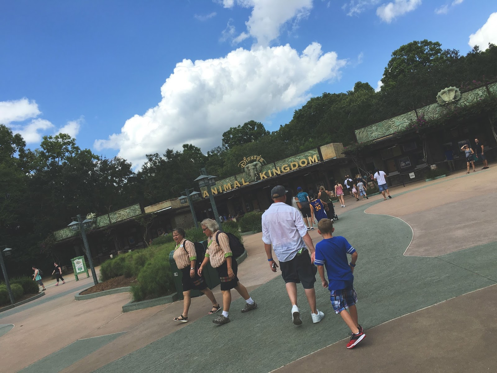 Animal Kingdom in Disney World, Florida