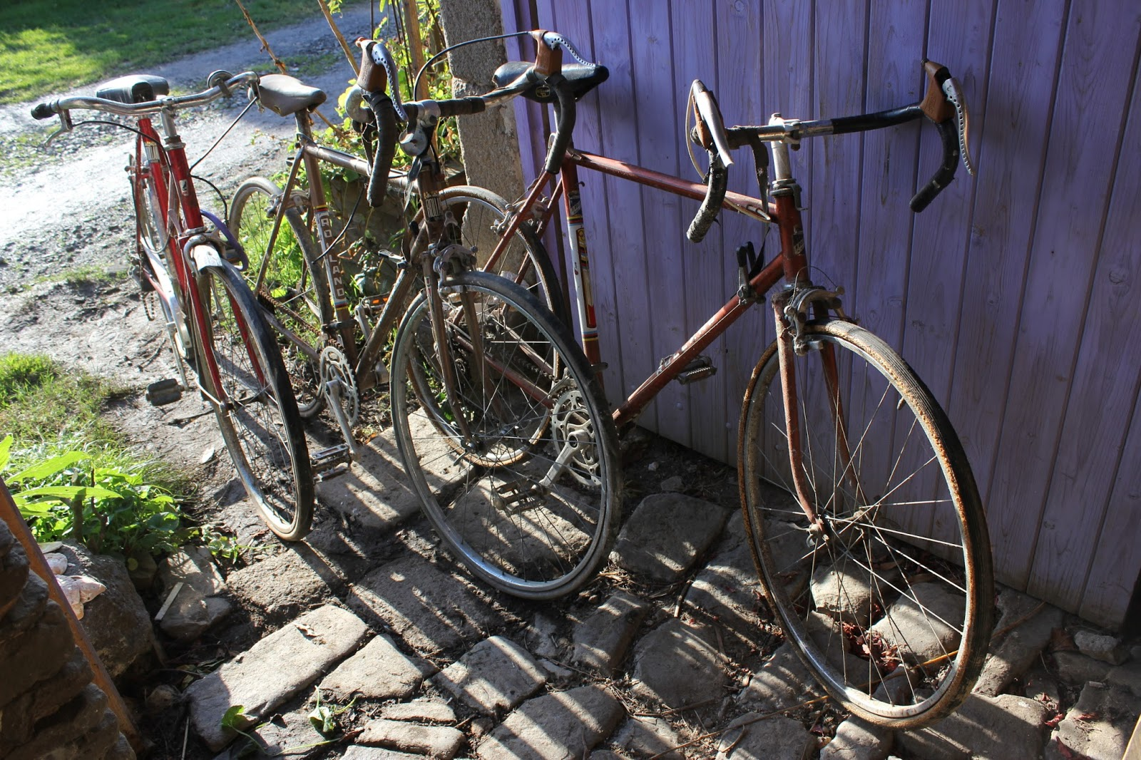 Bicycles rescued from the dump