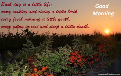 Each day is a little life: every waking and rising a little birth, every fresh morning a little youth, every going to rest and sleep a little death.