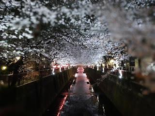 Meguro-gawa