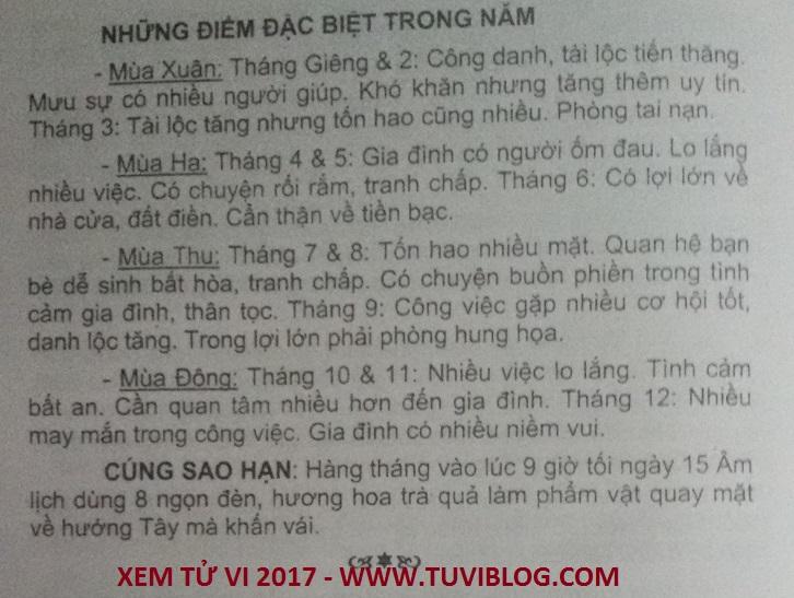 Tu vi tuoi Dinh Ti nam 2017 nam mang