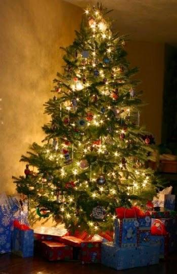 Il natale l 39 albero di natale tra leggenda e tradizione for Obi albero di natale