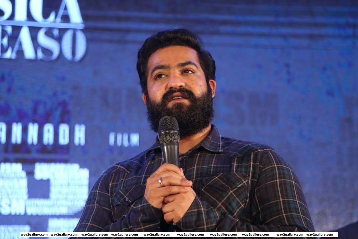 ISM is going to be the biggest blockbuster in the career of Kalyan Ram said Jr NTR