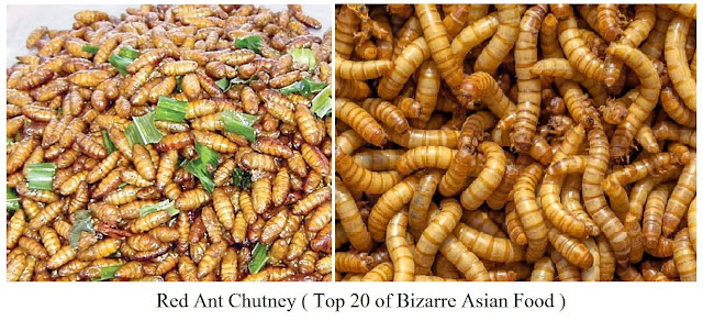 Red Ant Chutney- top 20 of bizarre asian food