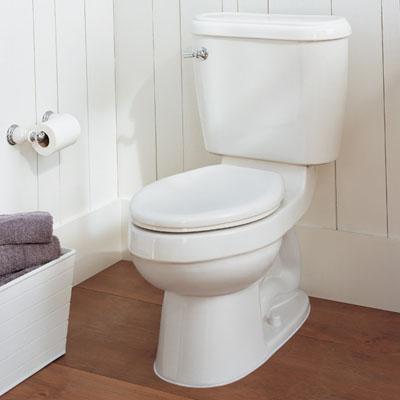 In Het Toilet.26 Fles In Het Toilet 101 Bespaartips