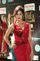 Videesha in Spicy Floor Length Red Sleeveless Gown at IIFA Utsavam Awards 2017  Day 2  Exclusive 03.JPG