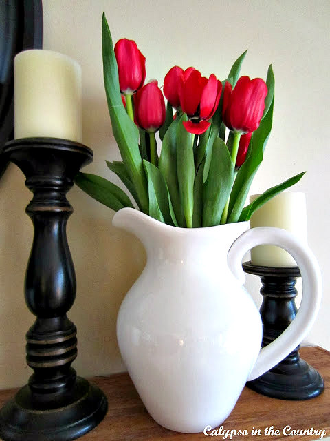 Red Tulips in White Pitcher