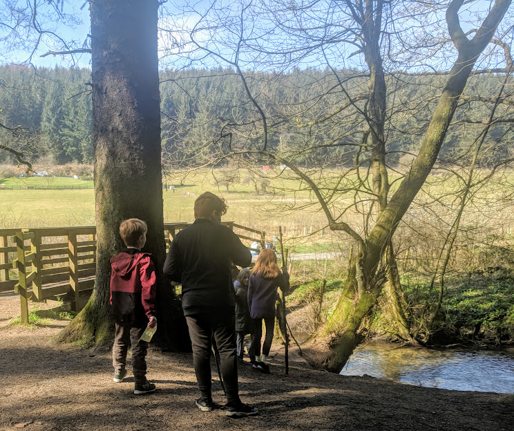 A Chilled Weekend Break with Friends & Tweens in North Yorkshire  - Scenic walk in Dalby Forest