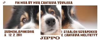 http://jekkula.blogspot.fi/p/jippo.html