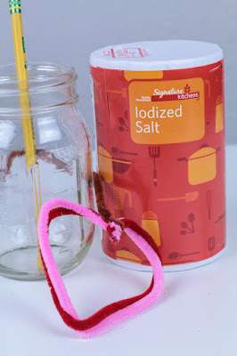 pipe-cleaners-salt-mason-jar-science