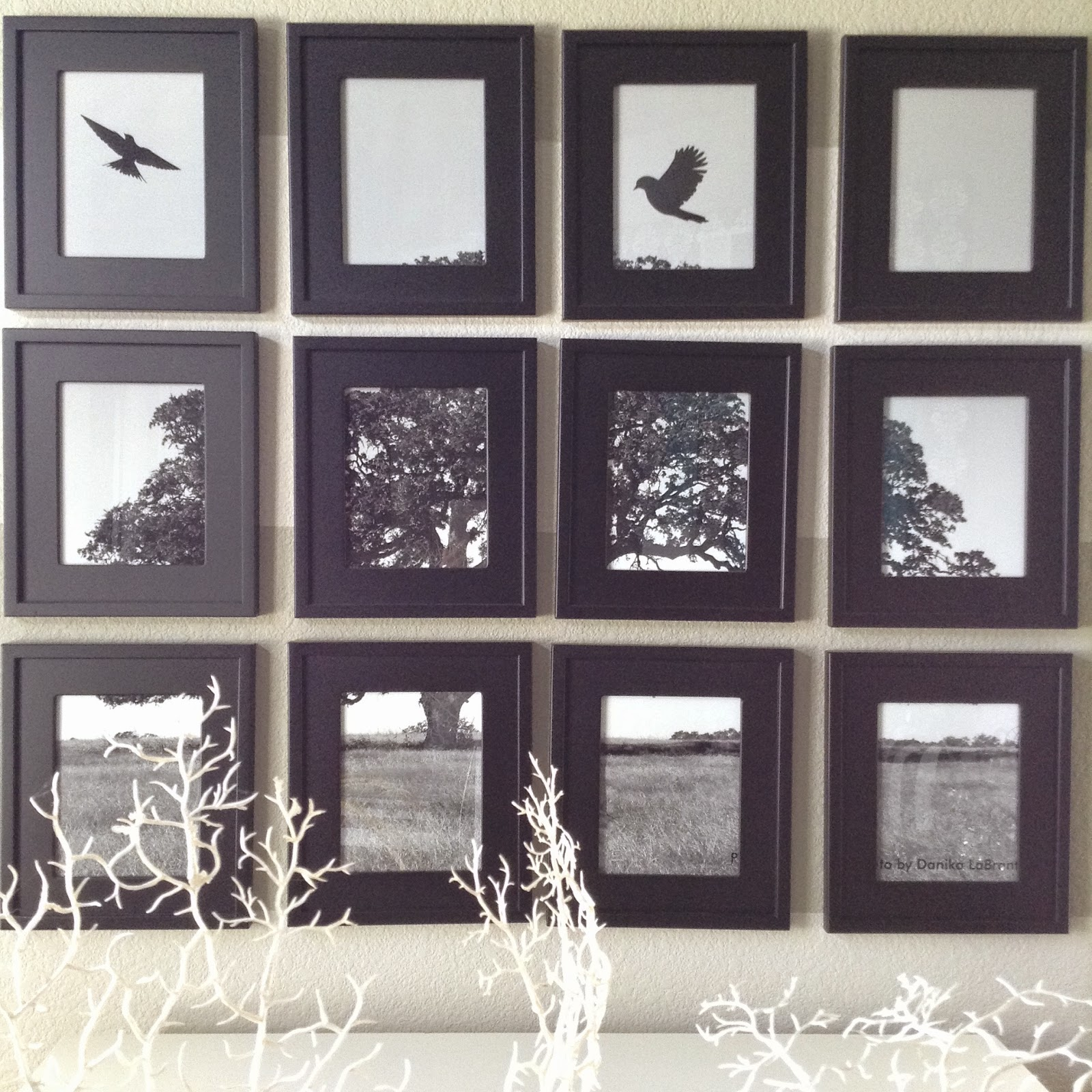 Funky One Picture Multiple Frames Vignette - Picture Frame Ideas ...