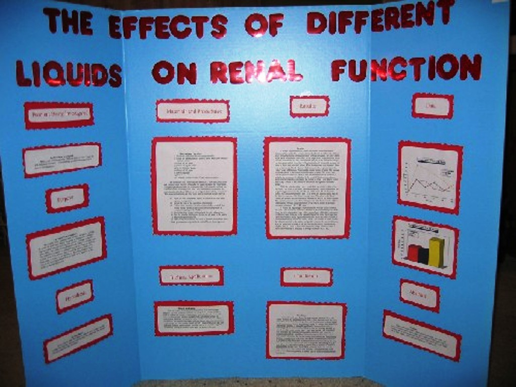 Complete Diy Wood Science Projects 7th Grade Ideas Radha Plans Idea