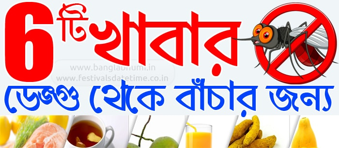 6 Diet Meal Plan for Dengue Patient