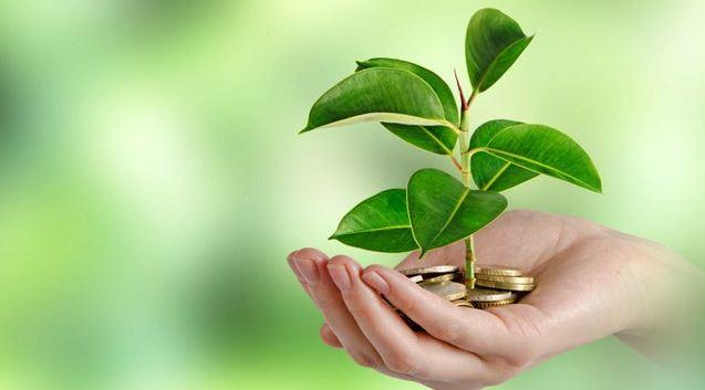 Green Sukuk dan Era Baru Pendanaan Lingkungan