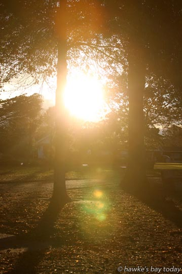 Warm autumn weather, late afternoon sun in Cornwall Park, Hastings. photograph