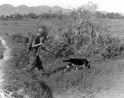 Chief the War Dog K-9 Corps