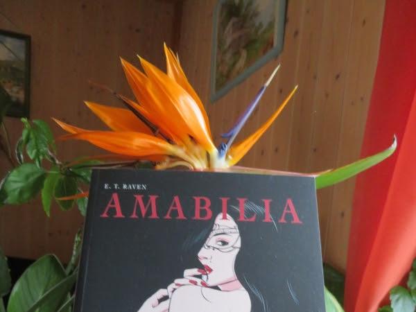 Amabilia, intégrale, tome 1 de E.T. Raven
