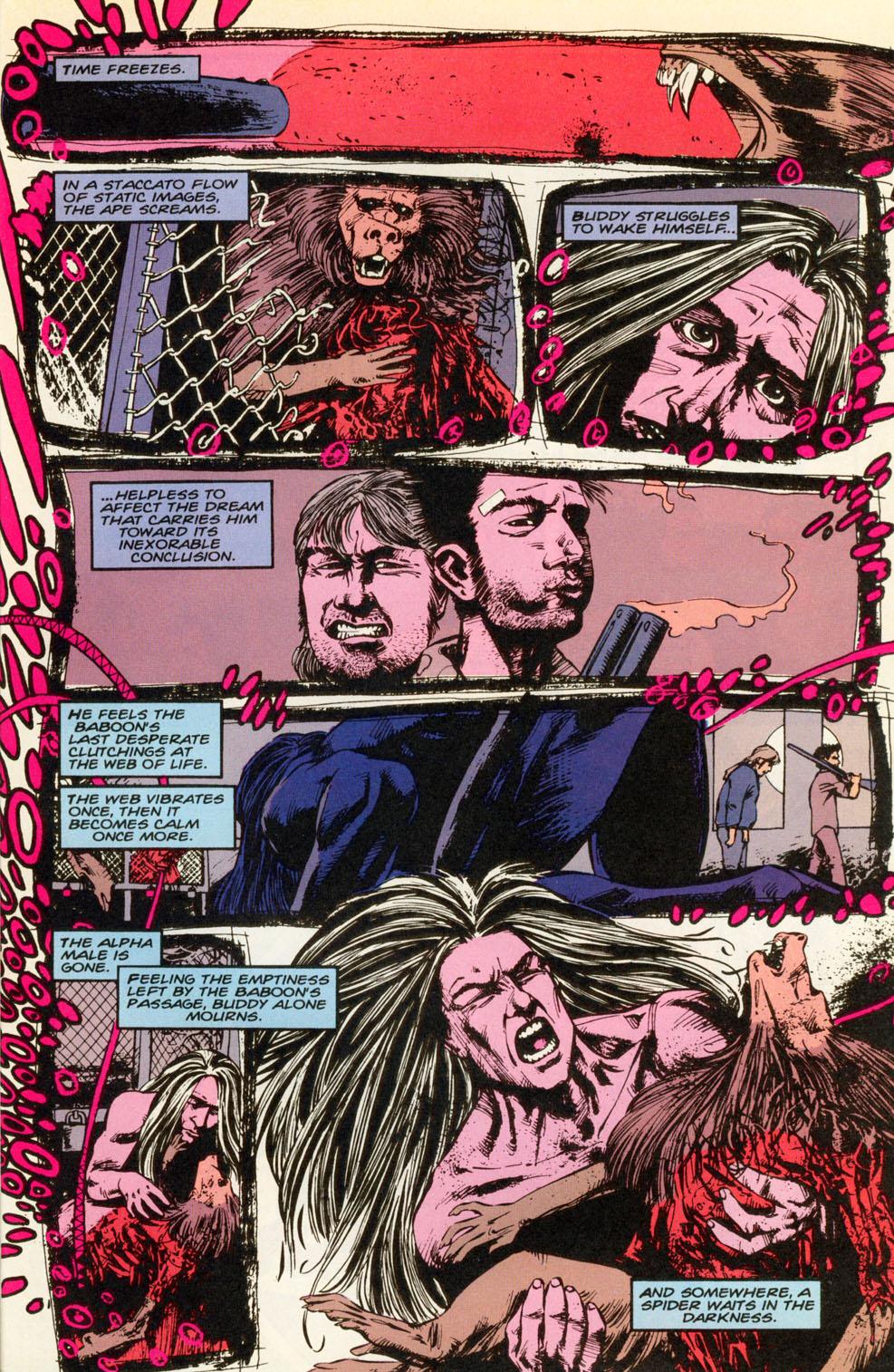 Read online Animal Man (1988) comic -  Issue #83 - 24