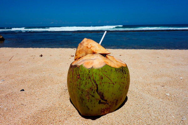 Menikmati es kelapa muda di Pantai Sundak