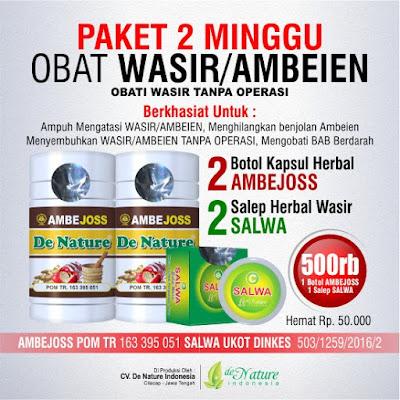 paket obat herbal untuk wasir atau ambeyen